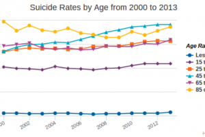 Suidice Rates By Age 2000-2013